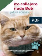 _Un Gato Callejero Llamado Bob - James Bowen