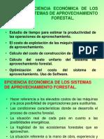 Tema III - Eficiencia Económica de Los SAF