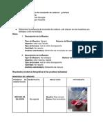 Practica 1 Toxico-CO y CN (1)