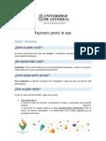 ANEXO+2+REGLAMENTO+DE+SAPO.pdf