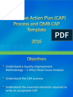CAP Process and CAP Template