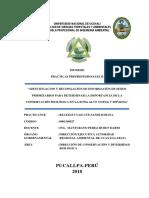 IDENTIFICACION Y RECOPILACIÓN DE INFORMACIÓN DE SITIOS PRIORITARIOS PARA DETERMINAR LA IMPORTANCIA DE LA CONSERVACIÓN BI~1