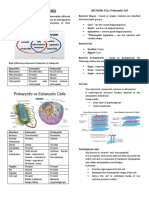 MicroLec Unit 2 Prokaryotic Cell