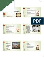 Project Presentation (2)