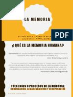 Memoria Humana -Exposición.pptx