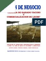 Plan Negocio Ganado Vacuno y Comercialzacion Leche 1