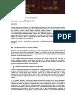 04_nemirovsky_es Transformaciones en La Practica Psicoanalitca