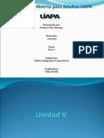 Unidad V