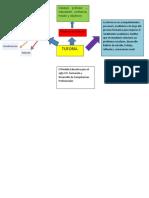 Doc1mapa mental que resuma el marco normativo de la Tutoría a nivel federal, estatal e institucional..docx