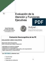 EVNPS - Evaluacion de La Atencion y FE