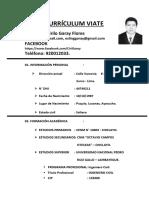 CV Esling Garay