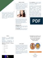Modelo de Carta Concurso Preparadores