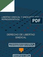 Tema 7 - Libertad Sindical