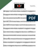Estrada Da Vida - Violin