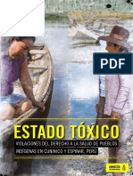 InformeEstadoToxicoAIPeru.pdf