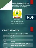 LAPJAG 19 JANUARI 2019 - IGD.pptx
