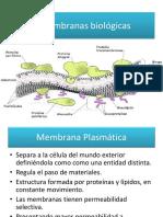 Membranas-biológicas