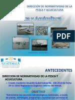 Situación de Los Recurso Pesqueros en Guatemala 2017