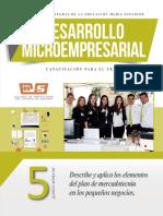 Desarrollo microempresarial