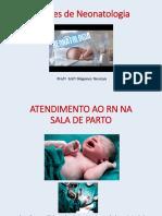 TE 17-18 Neonato Aula 3- Atendimento Ao RN Na Sala de Parto