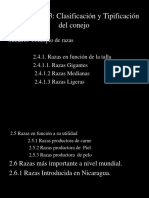 Conferencia 2.4 Razas.pdf