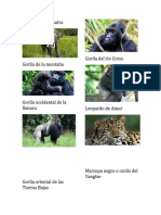 Plntas y Animales en Peligro de Extincion