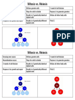 Mitosis vs Meiosis Cut and Paste