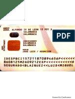 Luismi ID (2).pdf