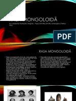 Rasa Mongoloidă