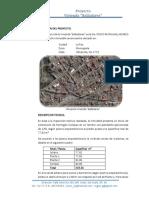 03 Intro Del Proyec_balladares
