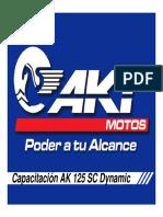 Manual de Taller AK 125 SC Dynamic