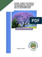 Árbol de Tajibo Morado