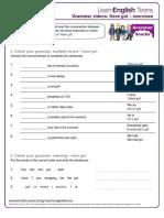 have_got_-_exercises_2.pdf