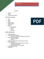 Estructura Del Plan de Negocios Merca(3)
