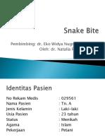 Snake Bite2.pptx