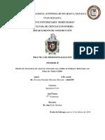 Informe II Practica de Profesionalizacion