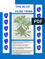 House Tribe Posters - BANKSIA