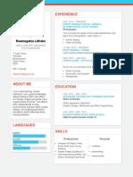 Reamo's CV