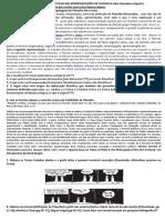 Definições e Características Das Representações de Filosofia Edno Gonçalves Siqueira
