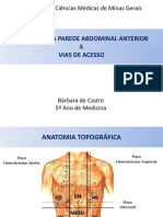 Anatomia da parede abdominal