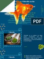 Efecto de La Chlorella Dietética en El Rendimiento Del Crecimiento y Los Parámetros Fisiológicos de Gibel Carp, Carassius Auratus Gibelio