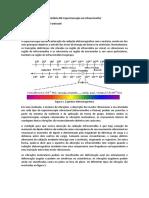 StephanieFantinatti-IV.docx