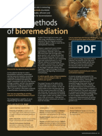 Novel Methods on Bioremediation