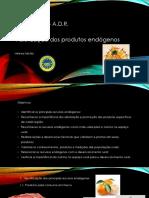 Produtos Endogenos I