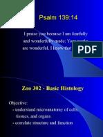 Histolec1