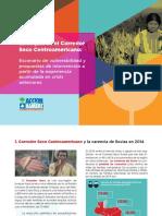 141029 ACF Sequia Corredor Seco & Herramientas