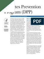 DPP_508