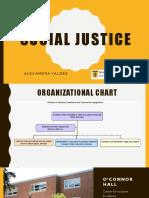 social justice practicum ii  1