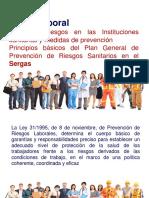 Resumen Salud Laboral