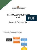 3. Estructura Del Proceso Civil